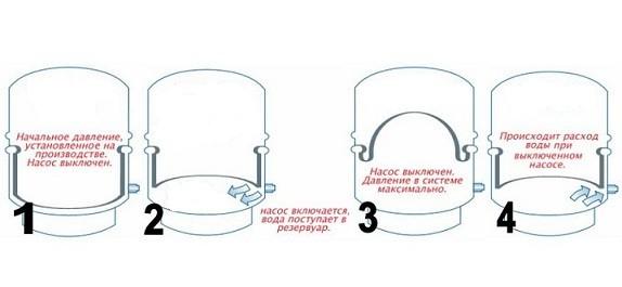 лаковый ремень-подвязки