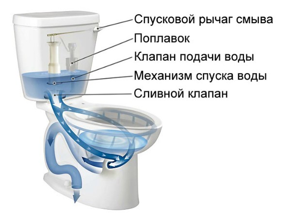 Как бачок унитаза пропускает воду в унитаз