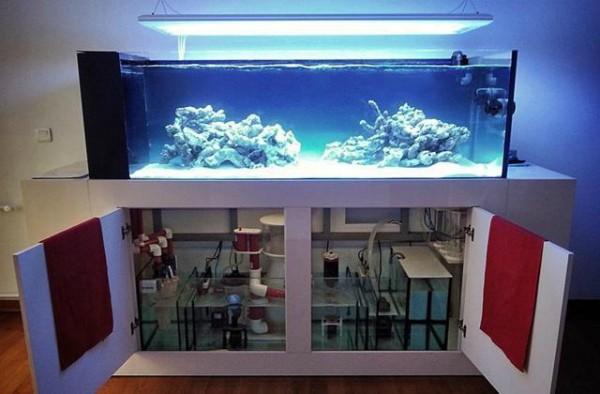 Большой аквариум с системой водоснабжения